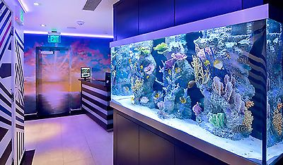 Aquarium Acrylic Sheets For Sale