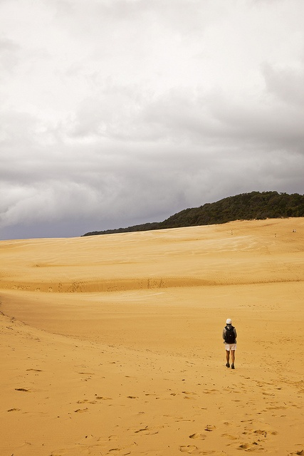Fraser Island, #Australia  #Deserts #travel Photo by Rachel Gouk