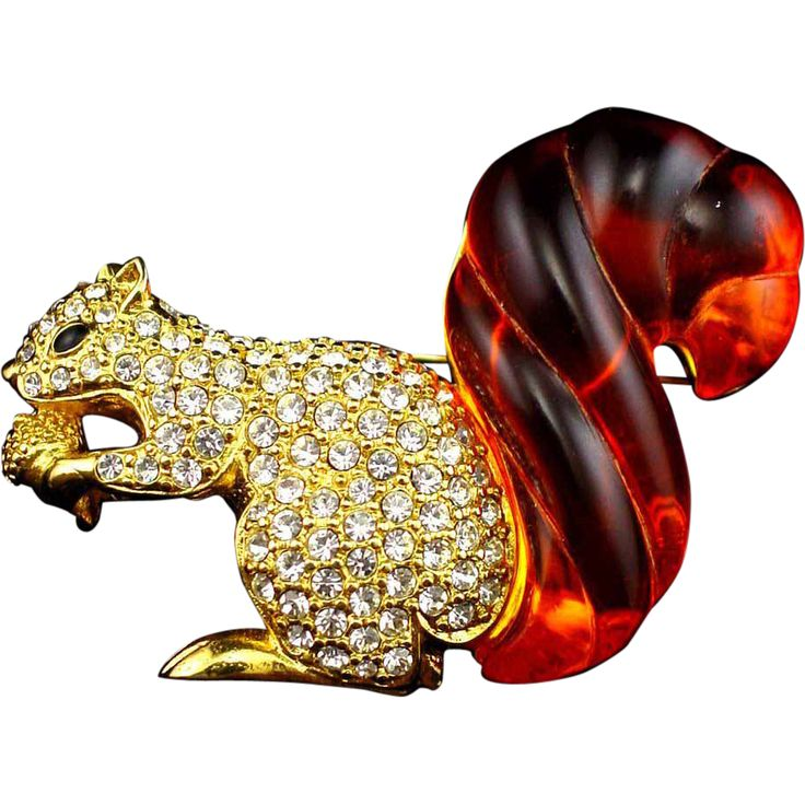 1000 Images About Squirrels On Pinterest Brooches Baby