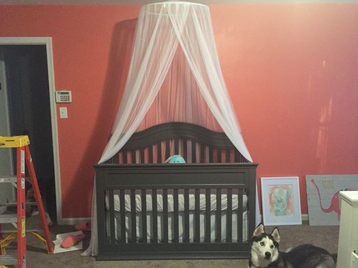 17 best ideas about canopy over crib on pinterest babies for Diy canopy over crib