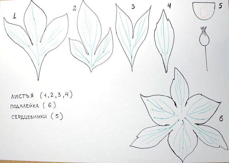 из орхидея выкройка фоамирана