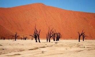 【F】  デッドフレイ ‐ナミビアの絶景・名所‐  絵画みたい