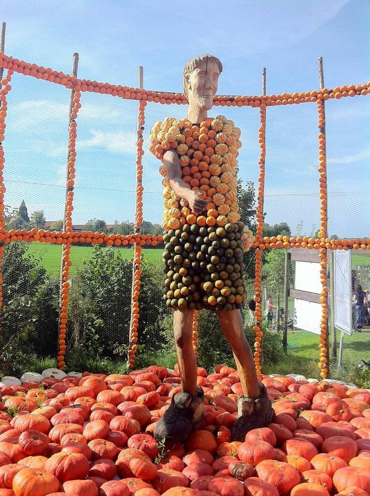 Jucker Farmart - La fiesta de las calabazas - Lanzamiento de peso, 2012