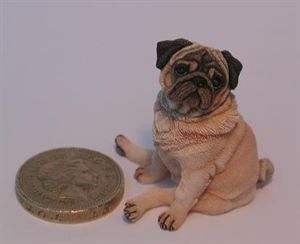 10 of the Best - Miniature Dolls House Pets - Fantasy Projects - Dolls House & Miniature Scene Magazine - Hobbies And Crafts
