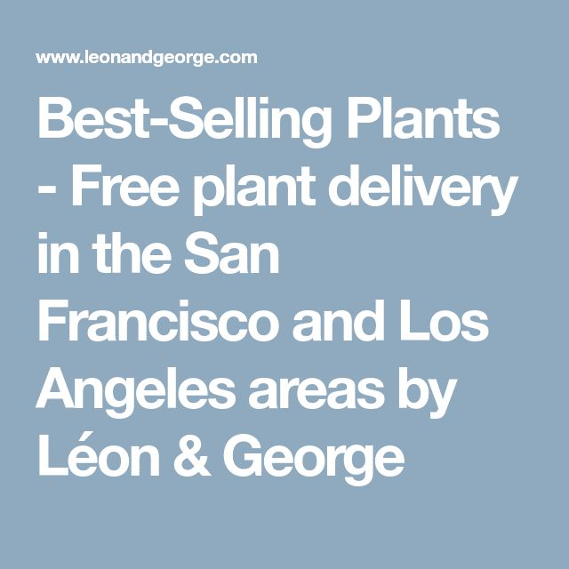 Best-Selling Plants - Free plant delivery in the San Francisco and Los Angeles areas by Léon & George