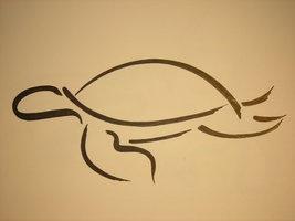 turtle__by_77stars.jpg (267×200)