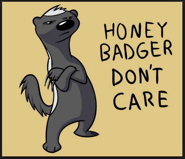 Nursing Notes of Discord: You can't badger Honey Badger
