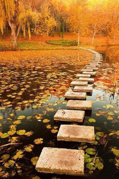Каменная дорога через озеро. #Польша #осень #autumn #Poland