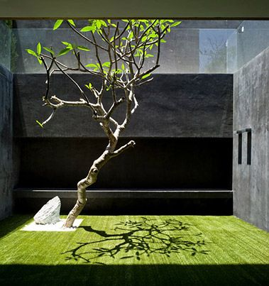 okay, I'm gonna be cruel- like this concept, but with this kind of budget a much better tree should have been chosen, the prune job is painful to look at...   Modern Zen Garden at  private residence in Herzliya Pituah, Israel by Pitsou Kedem Architects