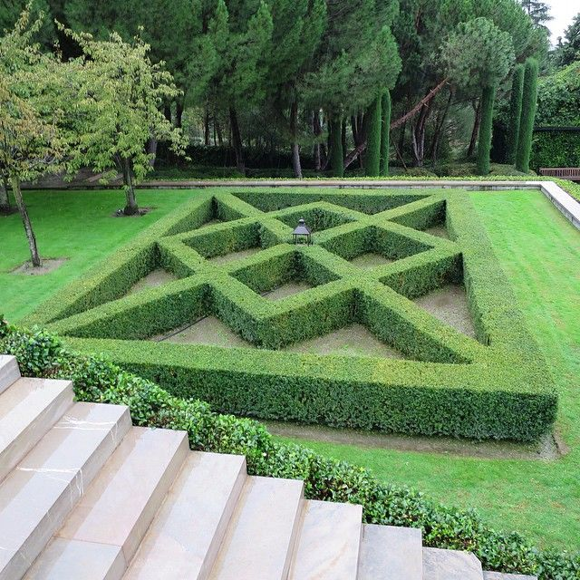 17 best images about hedges on pinterest gardens north for Tudor knot garden designs