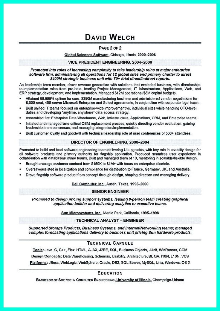 Information Technology Resume Examples Chief Technology Officer