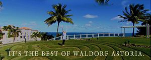 Waldorf Astoria Hotels & Resorts combine breathtaking surroundings and legendary personalised service. Each luxury hotel is a classic in its own right, known for its inspiring architecture and authentic history.  Showcasing the Waldorf collection on the Caribbean island of Puerto Rico, the advert features aerial and underwater footage and we feel it perfectly captures the spirit of the resorts.