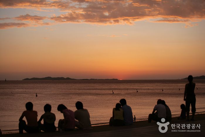 Daecheon Beach (대천해수욕장), Chungcheongdo's Korea100 Category : Nature, Natural Attractions, Tour Information :  Daecheon Beach is located on Korea\'s west coast in Chungcheongnam-do Province. Clamshells blend into the white sands of this beach that stretches 3...