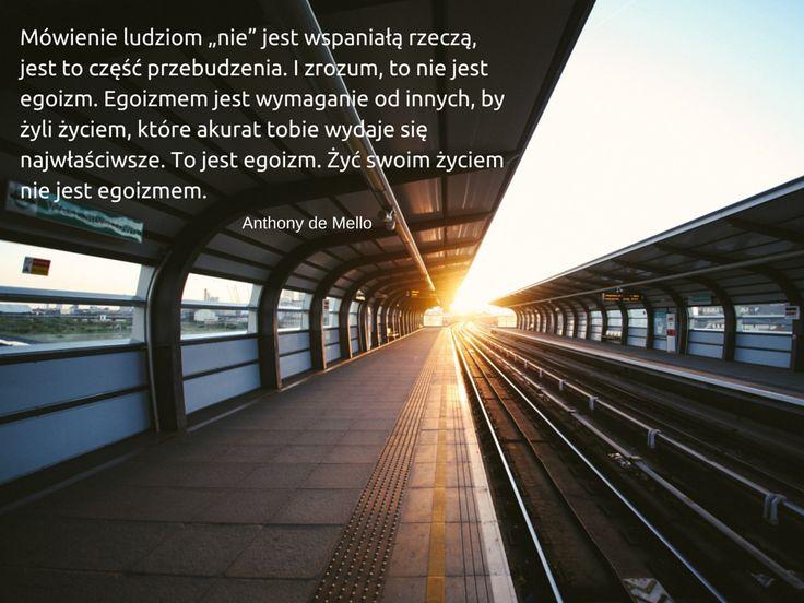 #asertywność, #egoizm, #lifefactory
