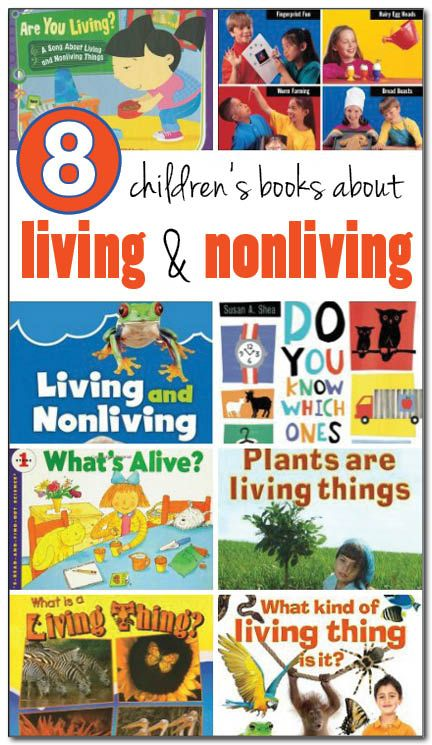8 books about living and nonliving things for kids #science || Gift of Curiosity
