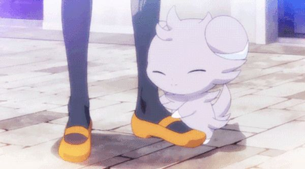 Starter Pokemon Regional Variants   Pokémon   Know Your Meme