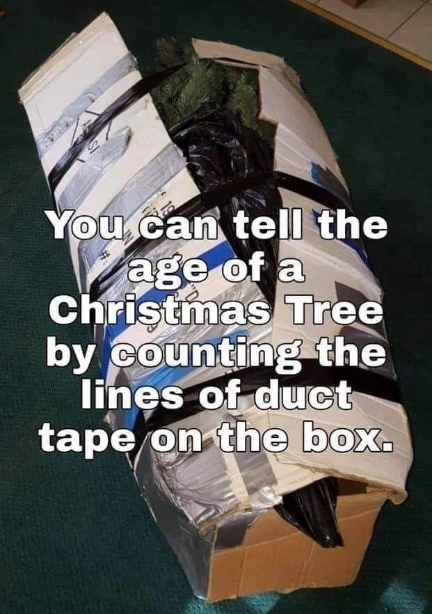 Pin By Dawn Loscri On Christmas Morning Humor Christmas Tree Box Funny Memes