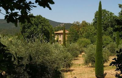 The Provence Post  - The home of Peter Mayle