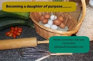 FREE home economics course | Plain & Not So Plain