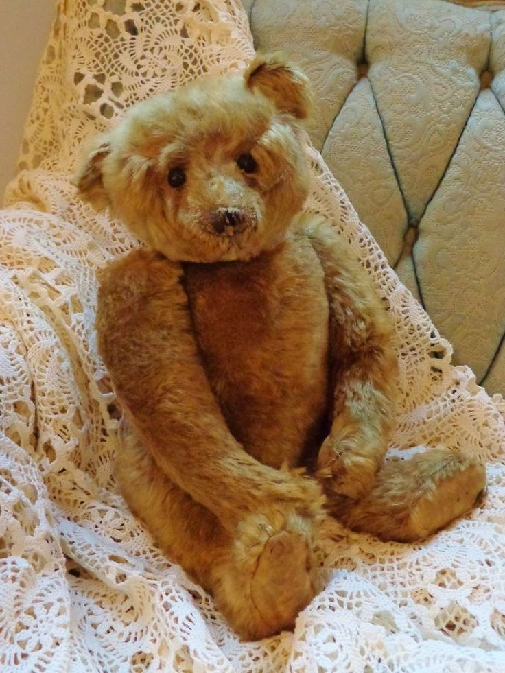 """Antique STEIFF Teddy Bear~17""""~Honey~Center Seam~c1906~Button~with xray~Very Nice (sold for $2,200.00)"""