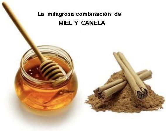 Miel y Canela 1