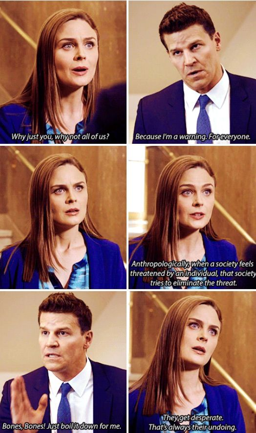 Bones season 9 episode 24 The Recluse in the Recliner  sc 1 st  Pinterest : recluse in the recliner - islam-shia.org