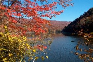 Hungry Mother State Park in VA: Fall Foliage And, Foliage And Hungry, State Parks, 14 Places, Favorite Places, Lovers, Hungry Mothers States Parks, Enjoying Fall, Beautiful Locations