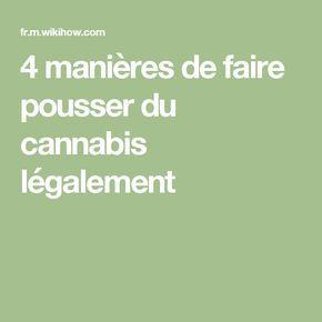 4 manières de faire pousser du cannabis légalement
