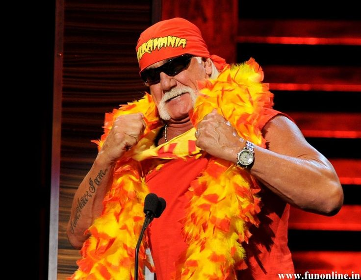 hulk hogan return to wwe 2014 Wallpaper HD Wallpaper