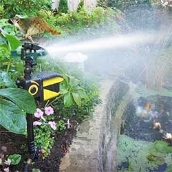 A motion activated sprinkler to protect your plants.  It is a gardener's best friend that keeps big and small animals from wrecking your gardening efforts. A scarecrow sprinkler...