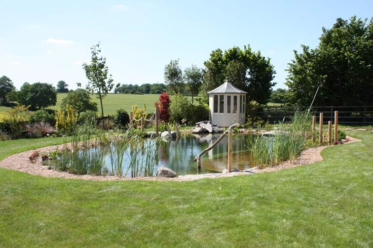 17 best images about farm ponds on pinterest swimming for Farm pond maintenance