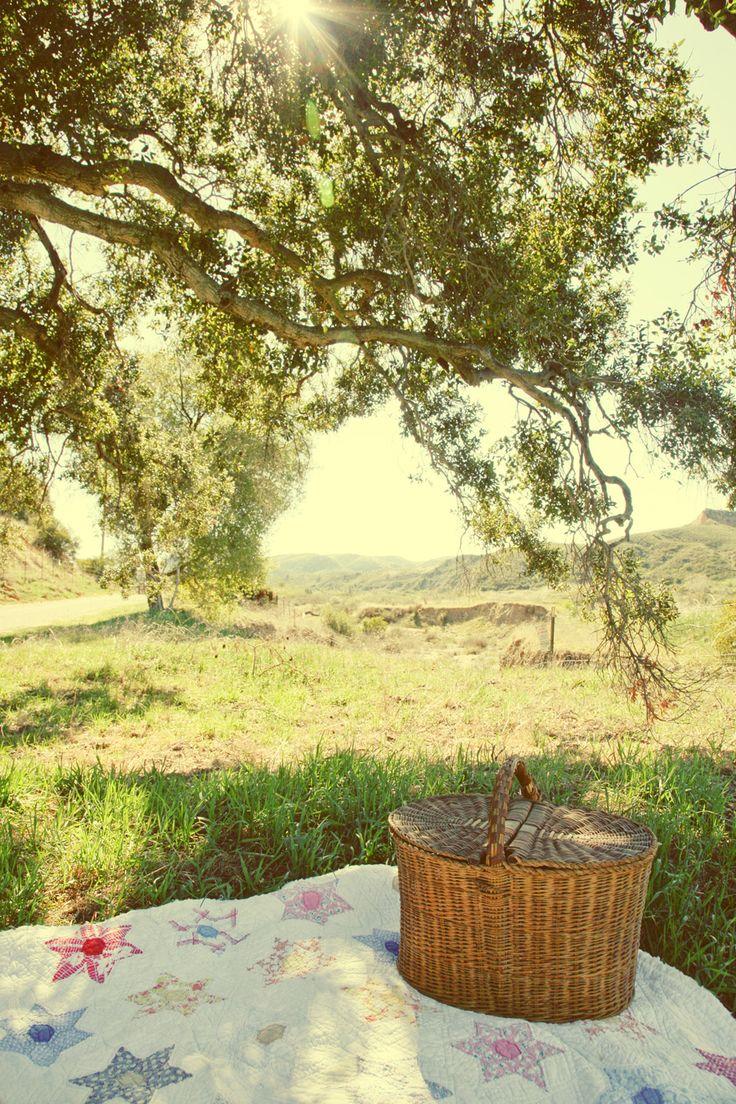 Sadie Olive picnic