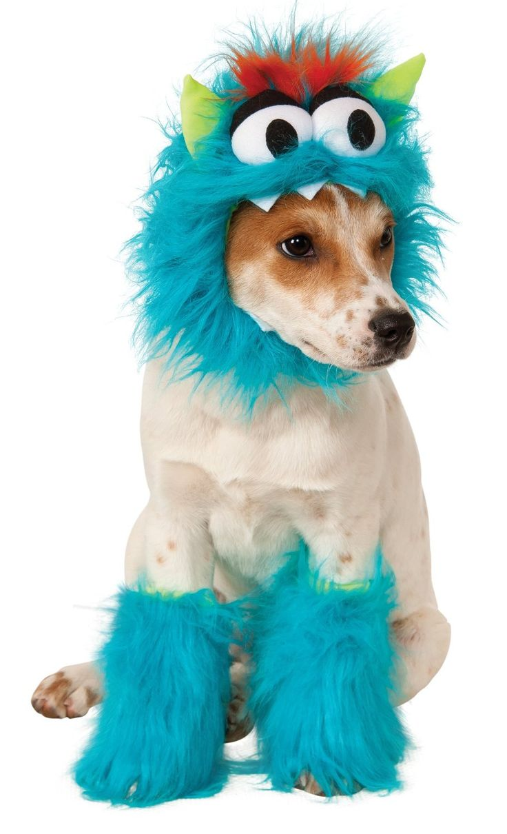 84 best Halloween Costumes for Pets images on Pinterest