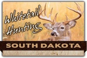 Information about whitetail deer hunting in South Dakota. Includes directory of whitetail outfitters and guides in SD.