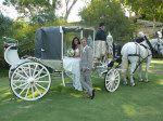 Golden Sunset Tours :: Cinderella Coach