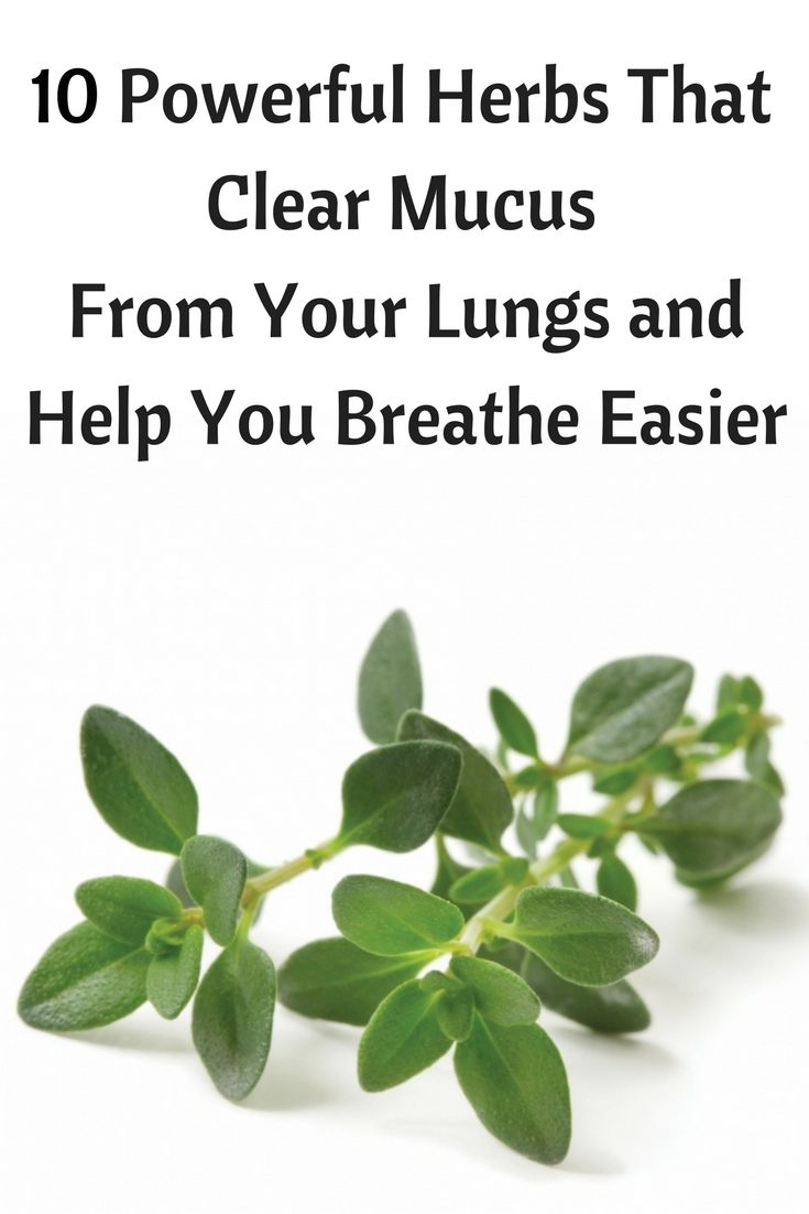 Viral and bacterial infections have a way of creeping up on you. Especially during cold and flu season, they seem to spread like wildfire. Taking medication to heal your infection can end up causing unwanted side effects. There are many herbal remedies that can help boost your lung health, provide immune system support and heal those pesky infections.