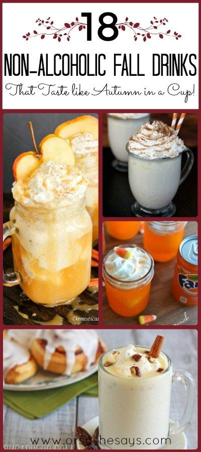 There are so many delicious flavors that come in Autumn, and these non alcoholic drinks let you taste so many of them! Check out the round up today! Mariah's got a list of 18 non alcoholic drinks that taste just like Autumn in a cup. www.orsoshesays.com