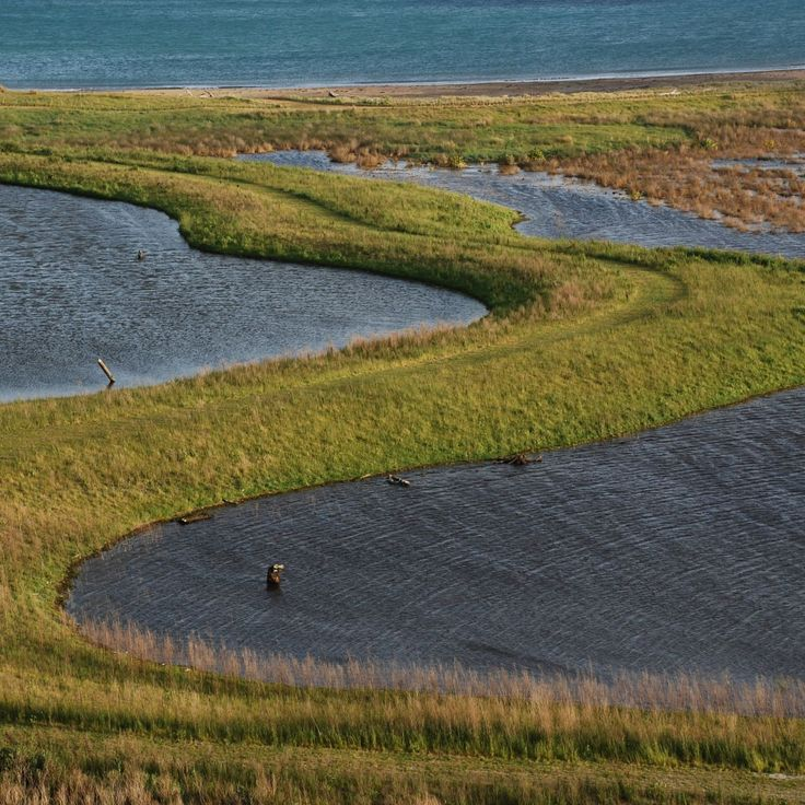 689 best images about landscapes meadows grasses wild for Nelson byrd woltz landscape architects