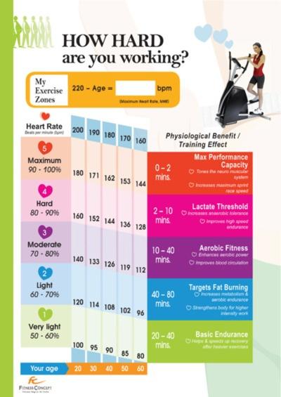 177 best Ejercitándose! images on Pinterest Back exercises - powder burn rate chart