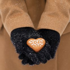 Authentic swedish gingerbread cookie recipe