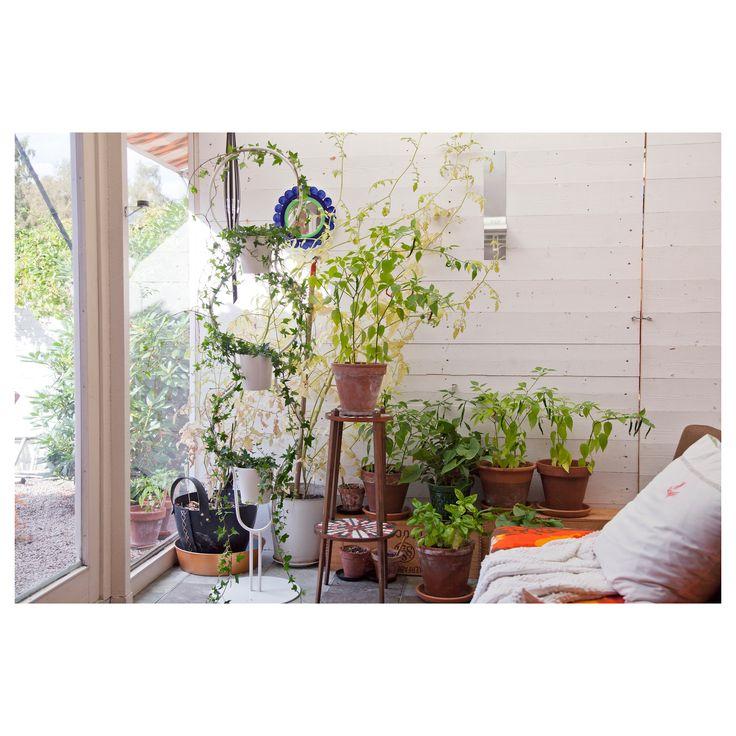 mejores 71 imágenes de ΘΕΛΩ en pinterest | ikea, florales y