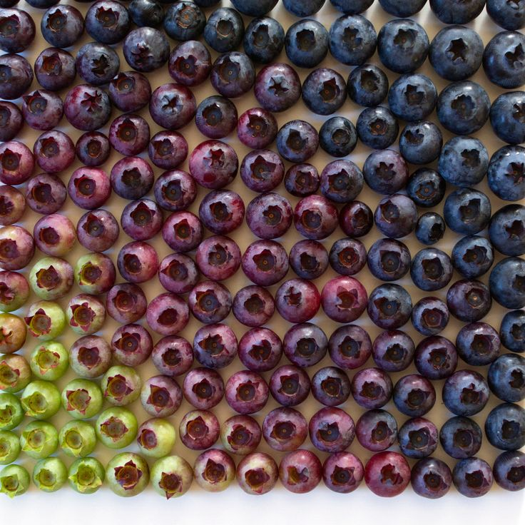Photographer Brittany Wright Captures Foods in Colorful Gradients.
