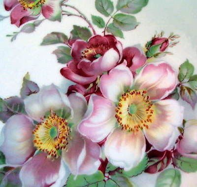 Wild Rose Schumann Arzberg Barvaria Golden Crown E R 1886 Plate Scalloped Edge | eBay