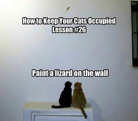 Paint a lizard on the wall...