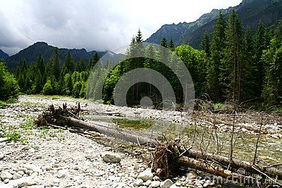 Mountain river in Tatra mountains Poland