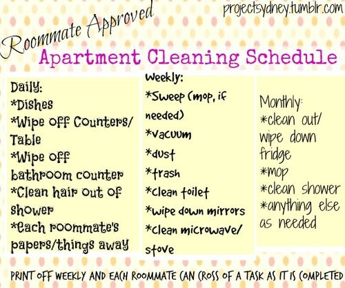 This is a REALISTIC apartment cleaning schedule…nobody has time to vacuum/sweep/clean shower every day…these are things that can realistically be done in an apartment and organized between you and your roommates on a busy schedule!