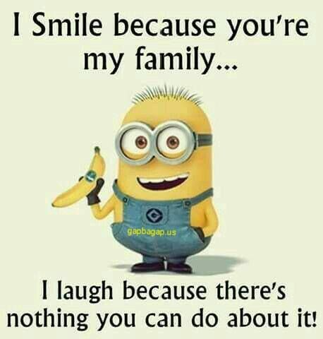 Funny Minion Joke About Family