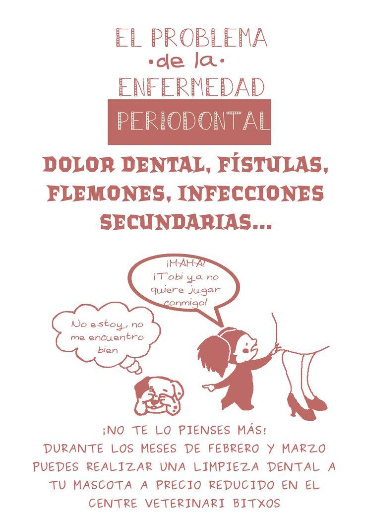 ¿Tiene tu mascota cambios de humor? Revísalo, puede tener dolor dental. http://www.cvbitxos.com/2013/09/cuidado-dental-de-tu-mascota-2013.html