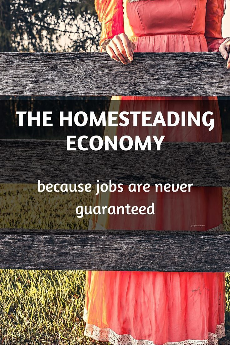 Having a working homestead can reduce worries about job security.