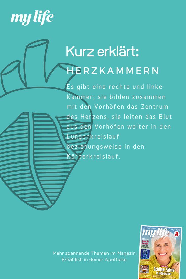 E Zigarette Herz Kreislauf